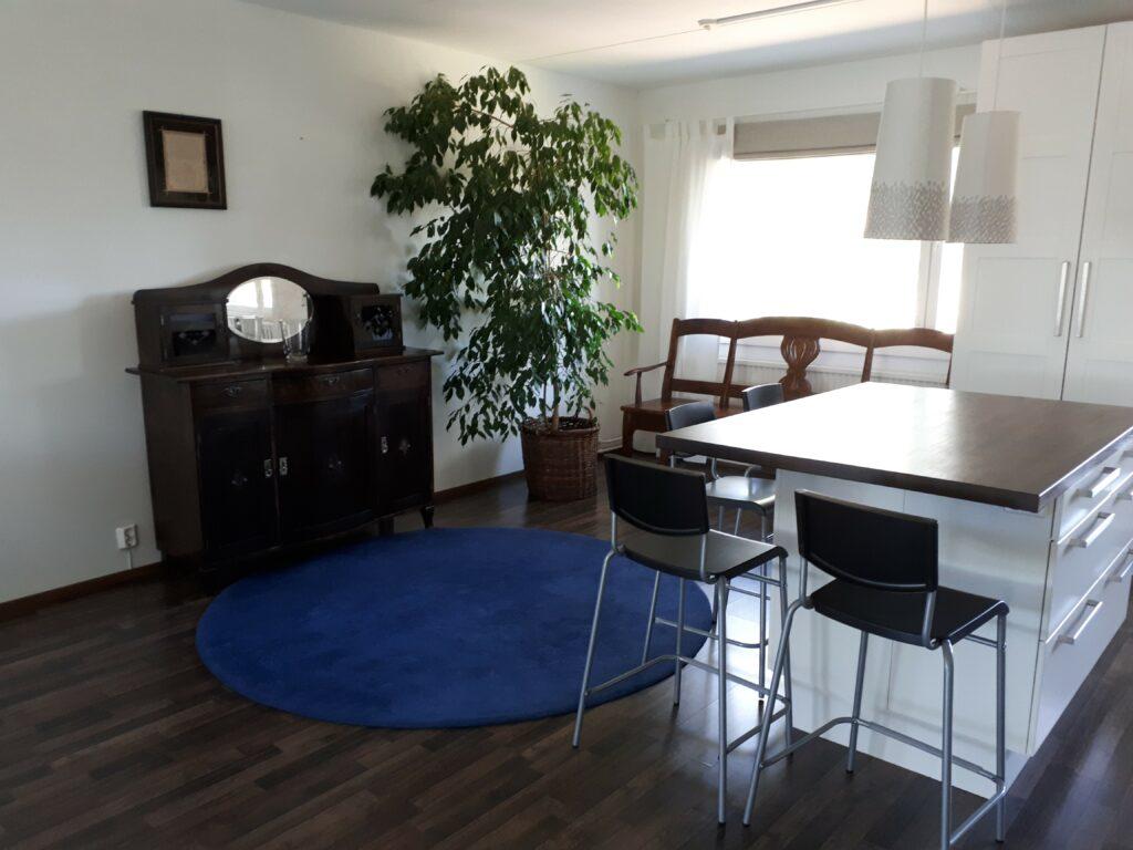 Olohuone, jossa pyöreä sinin matto, pöytä ja kaksi tuolia sekä huonekasvi