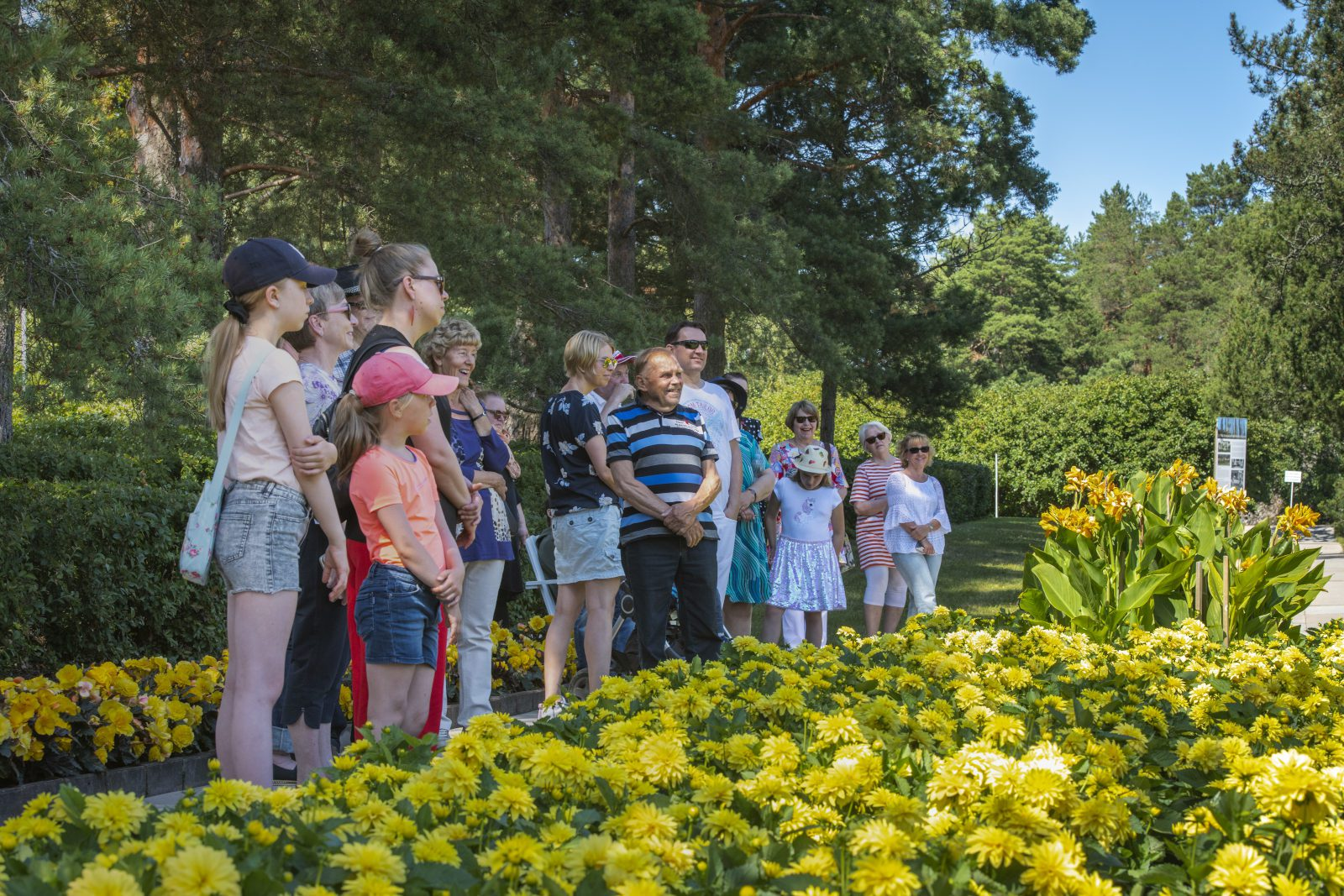 Joukko Kultarannnan puutarhan opastukselle osallistuvia asiakkaita. Keltaisia kukkia etualalla, puiston puita taustalla. Aurinkoinen päivä ja iloinen tunnelma.