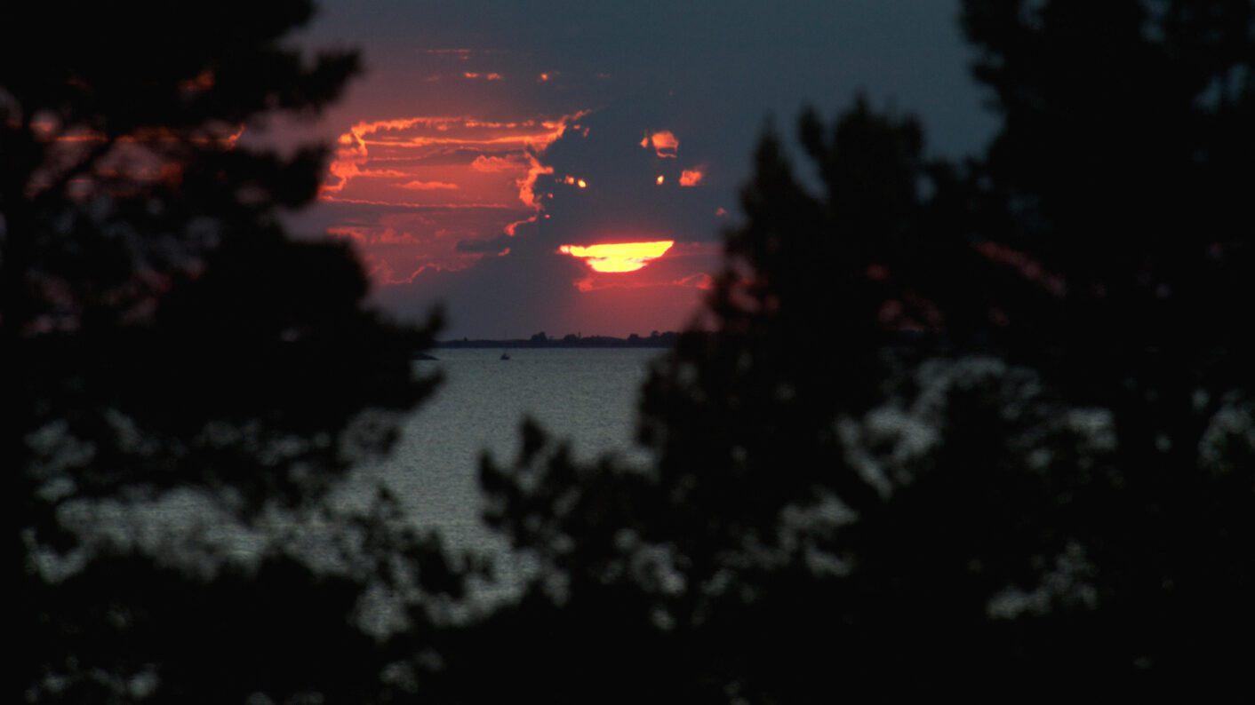Iltakuva saaristoon puiden latvojen välistä.